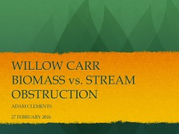 WILLOW CARR BIOMASS vs. STREAM OBSTRUCTION