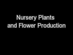 Nursery Plants and Flower Production PowerPoint PPT Presentation