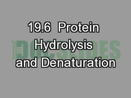 19.6  Protein Hydrolysis and Denaturation