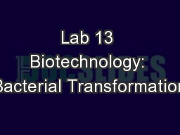 Lab 13 Biotechnology: Bacterial Transformation