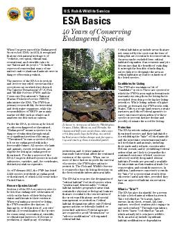 US Fish  Wildlife Service ESA Basics  Years of Conserving Endangered Species When Congress passed the Endangered Species Act ESA in  it recognized that our rich natural heritage is of esthetic ecologi