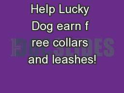Help Lucky Dog earn f ree collars and leashes! PowerPoint PPT Presentation