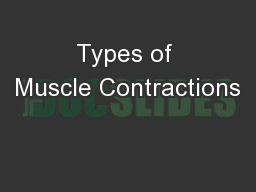 Types of Muscle Contractions