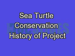 Sea Turtle Conservation History of Project