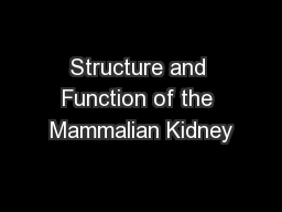 Structure and Function of the Mammalian Kidney