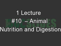 1 Lecture  #10  � Animal Nutrition and Digestion