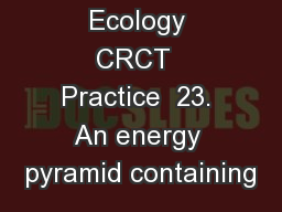 Ecology CRCT  Practice  23. An energy pyramid containing