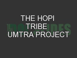THE HOPI TRIBE  UMTRA PROJECT