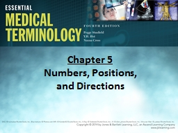 Chapter  5 Numbers, Positions,