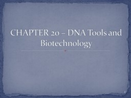 CHAPTER 20  –  DNA  Tools and Biotechnology