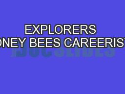 EXPLORERS HONEY BEES CAREERISTS