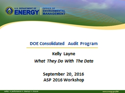 DOE Consolidated Audit Program