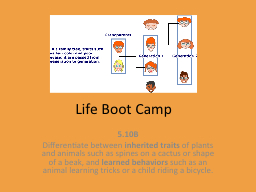 Life Boot Camp 5.10B   Differentiate