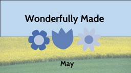 Wonderfully Made   May Wonderfully Made