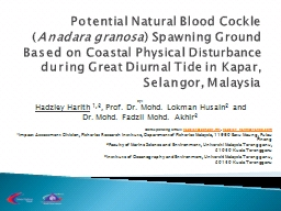 Potential Natural Blood Cockle ( PowerPoint PPT Presentation