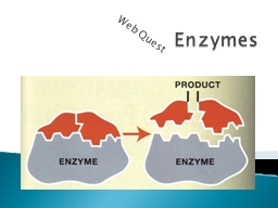 Enzymes  Web Quest Enzymes are proteins that speed up chemical reactions in the body.