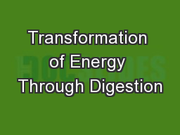 Transformation of Energy Through Digestion