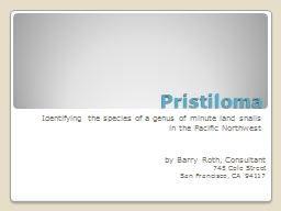 Pristiloma Identifying the species of a genus of minute land snails