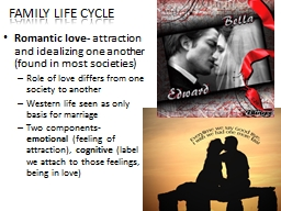 Family Life Cycle Romantic love-