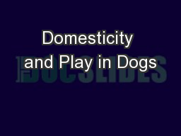 Domesticity and Play in Dogs PowerPoint PPT Presentation