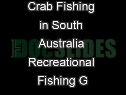 Crab Fishing in South Australia Recreational Fishing G