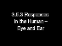 3.5.3 Responses  in the Human – Eye and Ear