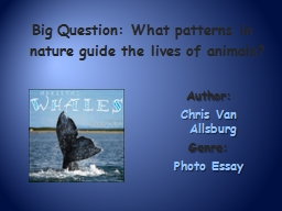 Big Question: What  patterns in nature guide the lives of animals?