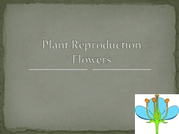 Plant Reproduction Flowers PowerPoint PPT Presentation