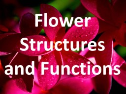Flower Structures and Functions