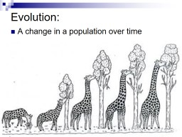 Evolution: A change in a population over time