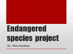 Endangered species project PowerPoint PPT Presentation