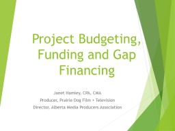 Project Budgeting, Funding and Gap Financing