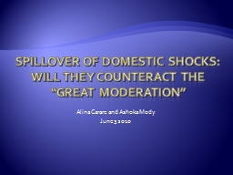 Spillover of Domestic Shocks: Will they counteract the �great moderation�