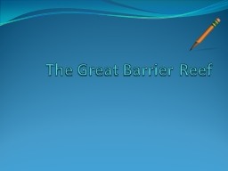 The Great Barrier Reef What is the Great Barrier Reef PowerPoint PPT Presentation