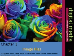 Chapter 3  Image Files © 2013 PowerPoint PPT Presentation
