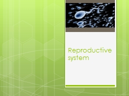 Reproductive system The purpose of the reproductive system is to ensure the perpetuation of the spe