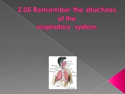 2.05 Remember the structures of the PowerPoint PPT Presentation