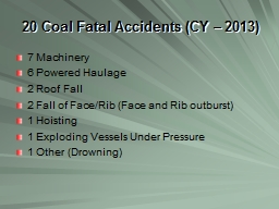 20 Coal Fatal Accidents (CY – 2013)