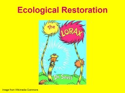 Ecological Restoration Image from Wikimedia Commons