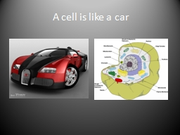 A cell is like a car The nucleus of a cell would be like the driver of a car, they control the cell