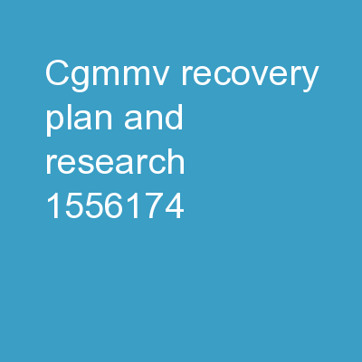 CGMMV Recovery Plan and Research