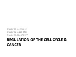 Regulation of the Cell Cycle & Cancer