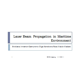 Laser Beam Propagation in Maritime Environment