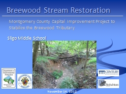 Breewood Stream Restoration PowerPoint PPT Presentation