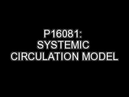 P16081: SYSTEMIC CIRCULATION MODEL