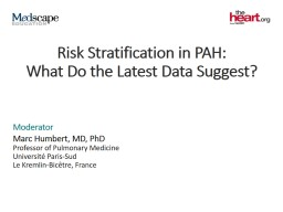 Risk Stratification in PAH: