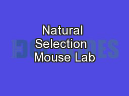 Natural Selection  Mouse Lab
