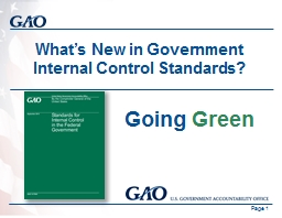 What's New in Government Internal Control Standards? PowerPoint PPT Presentation