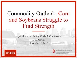 Commodity Outlook:  Corn and Soybeans Struggle to Find Strength