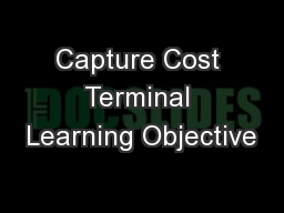 Capture Cost Terminal Learning Objective